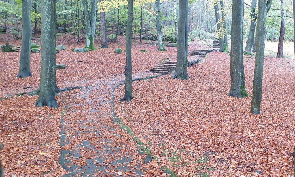 Trappa i Keillers park på hösten